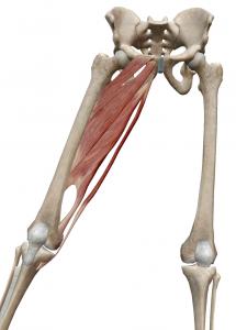 【動画】足の付け根(股関節)が痛い3つの原因と効果的 ...